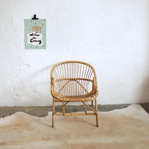 fauteuilrotinvintageaccoudoirs-F602_a