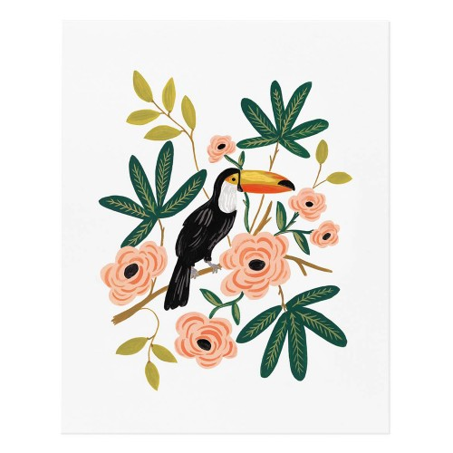 riffle-paper-toucan