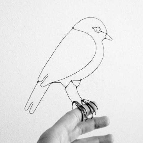 oiseau4_jpg__841660